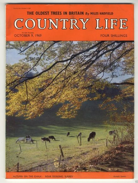 1969 COUNTRY LIFE Magazine GUN DOGS Philipa Tillyard LOSELEY PK Seefried